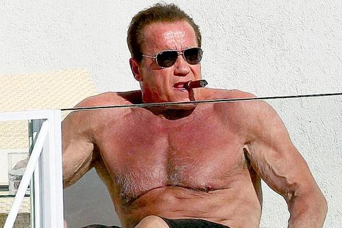 Он возращается: легендарный Арнольд Шварценеггер сыграет в сериале о бодибилдинге