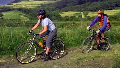Что делать если ваш верный друг-велосипед захромал
