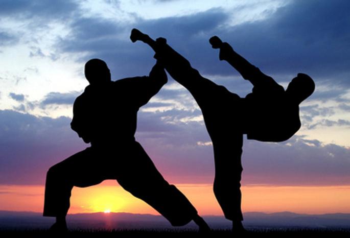 Виды и стили спортивных боевых единоборств
