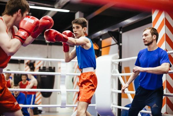 Юным боксерам обещают настоящий ринг